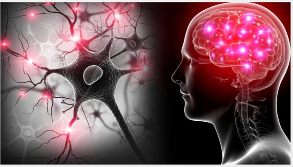 Rewire Your Brain Webinar